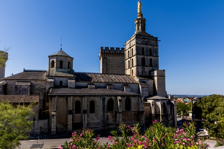 old historic abbey at sunny day in provence, france