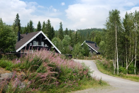 TRYSIL, NORWAY - 26 JULY 2018: black living houses near forest at largest ski resort Trysil in Norway Editorial