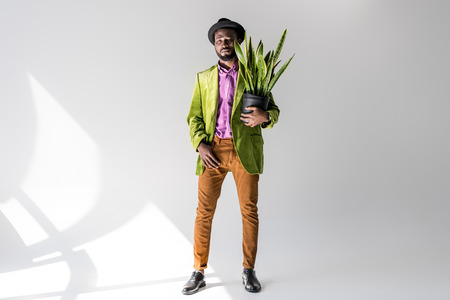 fashionable african american man in hat with green plant in flowerpot in hand posing on grey backdrop Stock Photo
