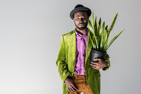 fashionable african american man in hat with green plant in flowerpot in hand posing isolated on grey