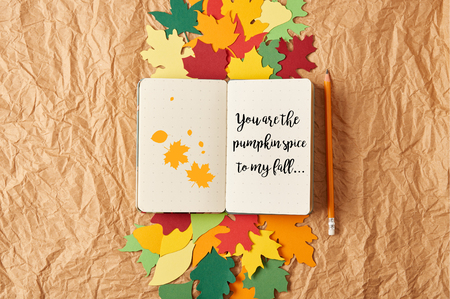 top view of notebook with you are the pumpkin spice to my fall lettering, pencil and colorful handcrafted paper leaves on crumpled paper background