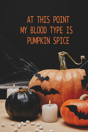 paper bats and spider on halloween pumpkins with at this point my blood type is pumpkin spice lettering