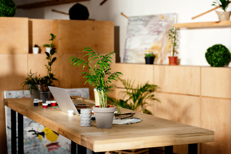 interior of artist studio with painting supplies, laptop and potted plants on wooden table Banco de Imagens