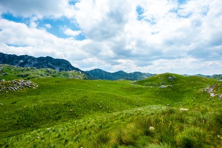 green grass, mountains and cloudy sky in Durmitor massif, Montenegro Stock Photo