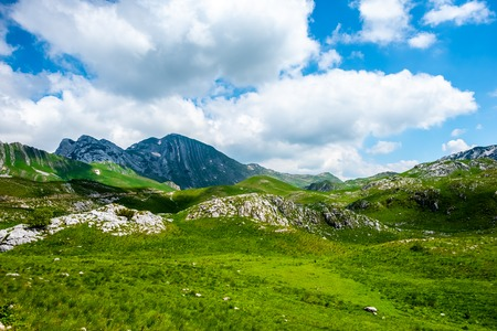 green valley, mountains and blue cloudy sky in Durmitor massif, Montenegro