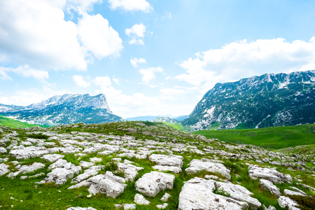 green valley with stones in Durmitor massif, Montenegro Stock Photo