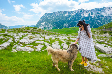 attractive woman in blanket palming fluffy dog on valley in Durmitor massif, Montenegro