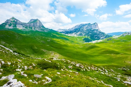 green valley with stones and mountain range in Durmitor massif, Montenegro Stock Photo