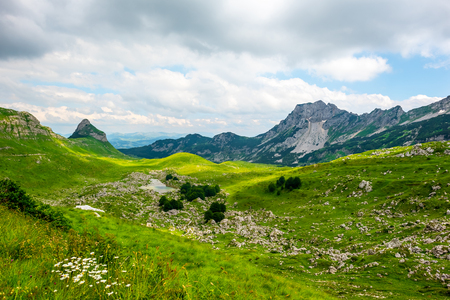 beautiful green valley with small stones in Durmitor massif, Montenegro Stock Photo