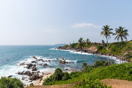 beautiful scenic view of palm trees om coastline and blue sky, sri lanka, mirissa Stok Fotoğraf