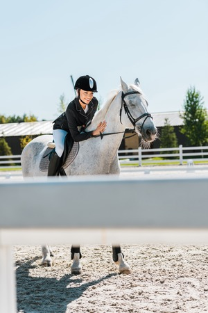 attractive female equestrian riding and palming thoroughbred horse at horse club
