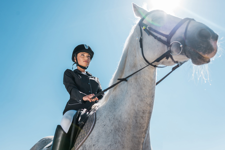 low angle view of attractive female equestrian riding horse against blue sky Stock Photo