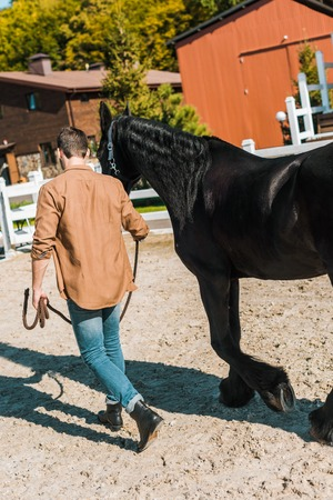 back view of cowboy walking with horse at horse club
