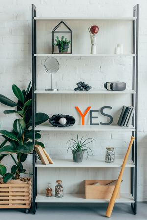 baseball ball, glove and plants on shelf in office