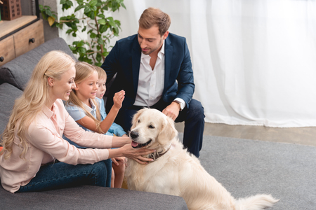 high angle view of happy young family petting dog while sitting on couch at home