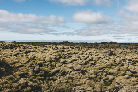 beautiful landscape with cloudy blue sky in Iceland Moss  (Cetrria islndica) valley in Iceland