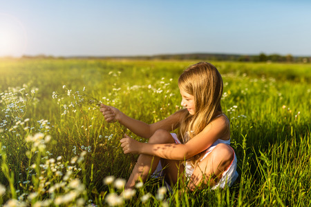 adorable little child collecting field flowers
