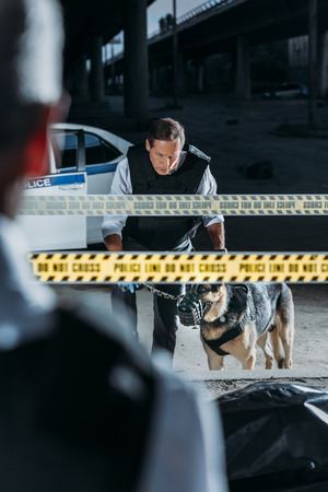 partial view of male police officer standing near corpse in body bag while his colleague standing with german shepherd on leash at crime scene
