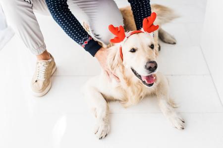 man in christmas sweater stroking golden retriever dog in christmas deer horns Фото со стока