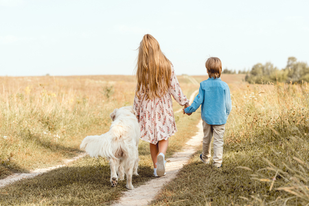 rear view little kids walking by road in field with golden retriever Stock Photo