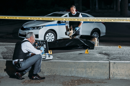 focused mature policeman sitting with case for investigation tools while his colleague with alsatian on leash standing near corpse in body bag at crime scene