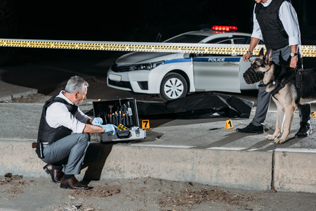male police officer sitting near case for investigation tools while his colleague standing near with dog on leash at crime scene with corpse