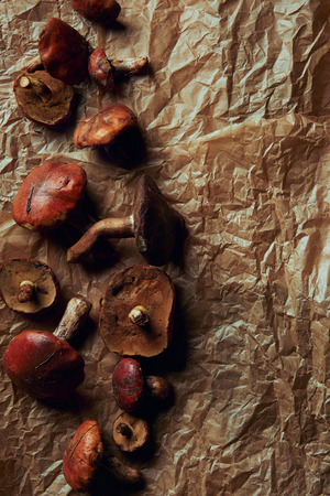 top view of fresh raw tasty suillus mushrooms on parchment paper Banco de Imagens