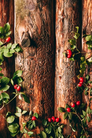flat lay with briar red berries and green leaves on wooden background Banque d'images
