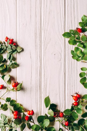flat lay with briar berries with green leaves on white wooden surface Banque d'images
