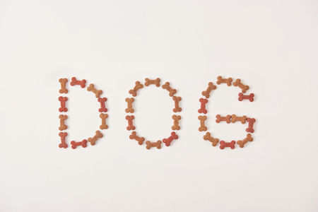 top view of lettering dog made by pet food on white surface