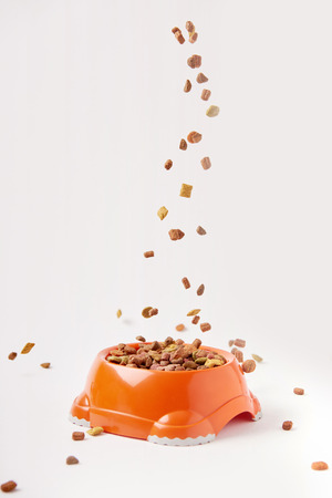 El enfoque selectivo de los gránulos que caen en un recipiente de plástico con comida para mascotas en blanco Foto de archivo