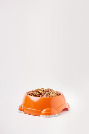close up view of plastic bowl with pet food on white Stock Photo