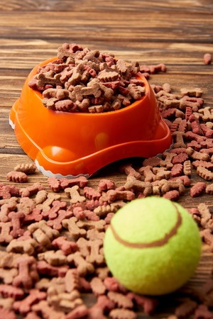 close up view of plastic bowl with dog food and ball on wooden table Stock Photo