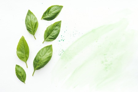 top view of delicious basil leaves on white surface with green watercolor strokes