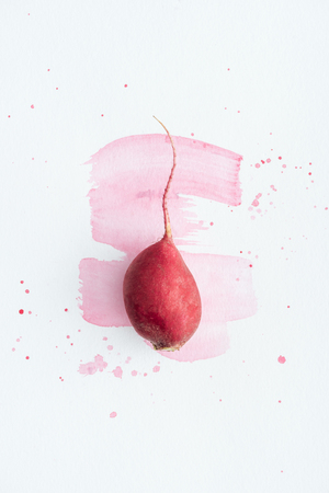 top view of single radish on white surface with pink watercolor strokes