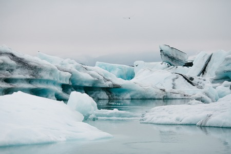 Spectacular Icelandic landscape with white and blue icebergs at cloudy day, Iceland, Jokulsarlon lagoon