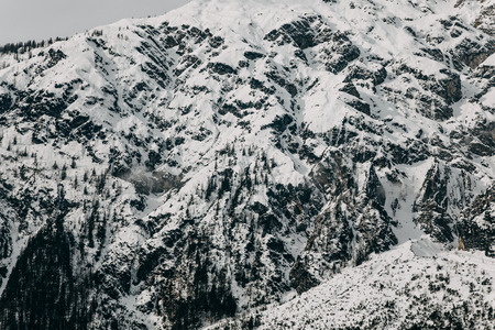 Beautiful snow-covered rocky mountains with trees, Austria 写真素材