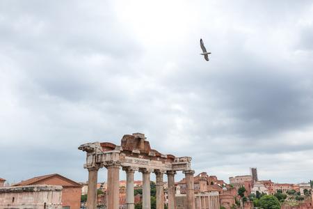 Bird in sky over Ancient ruins in Roman Forum Banque d'images - 110950912