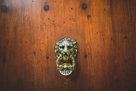 Wooden door metal door knocker decoration in Sienna