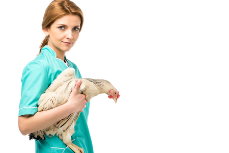 side view of veterinarian in uniform hooding chicken isolated on white