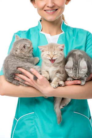 cropped shot of smiling veterinarian holding adorable kittens isolated on white
