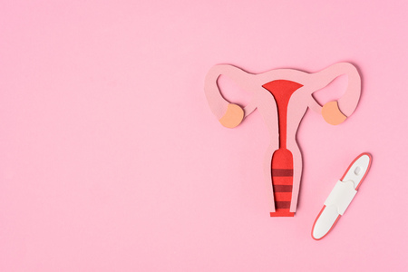Elevated view of female reproductive system and pregnancy test on pink background Stockfoto