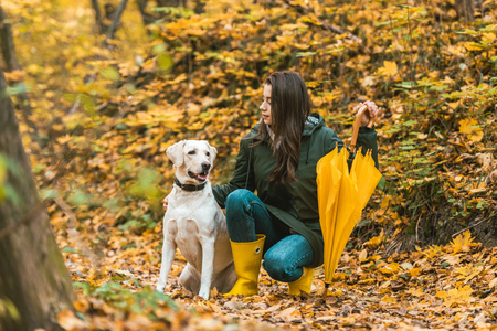 Beautiful girl with yellow umbrella siting with cute golden retriever in autumnal forest
