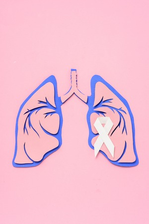 Flat lay with lung cancer awareness white ribbon and human lungs on pink background