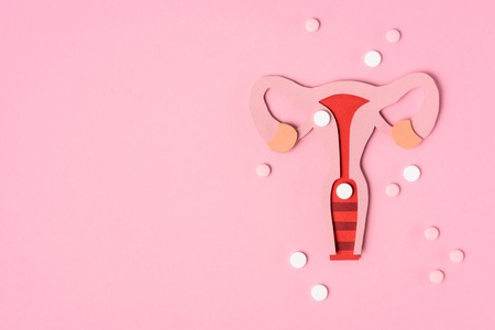 Top view of female reproductive system and pills on pink background Imagens