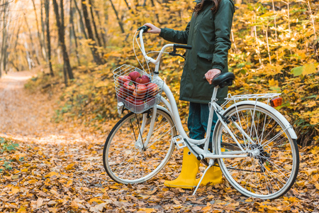 Partial view of woman in yellow rubber boots standing near bicycle with basket full of apples in autumnal forest