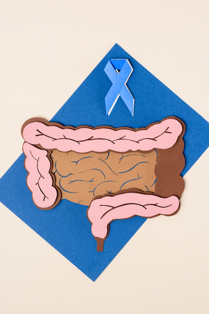 Top view of prostate cancer awareness blue ribbon and human large intestine on blue with beige background