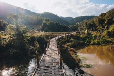Wooden footbridge through green vegetation at Pai, Thailand