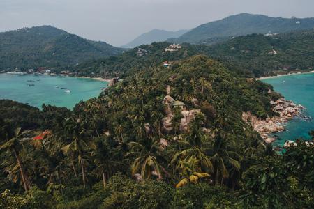 Beautiful green palm trees and calm water at Ko Tao island, Thailand 版權商用圖片