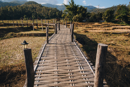 Wooden pathway through agricultural field at Pai, Thailand Stock fotó